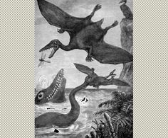 Jurassic  by Eduard Riou (1838-1900)  from Chatterbox Magazine  1880 United States