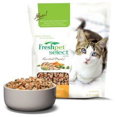 When it comes to any of the #FreshpetSelect cat food flavors, even my fussy cat becomes a pussy! #FreshpetReviews