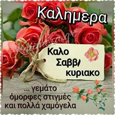 Beautiful Pink Roses, Good Morning, Quotes, Buen Dia, Quotations, Bonjour, Good Morning Wishes, Quote, Shut Up Quotes
