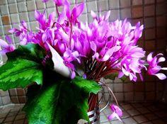 couleurs et mixed media: Comme un envol de papillons roses