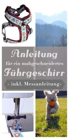 Kostenlose Anleitung für ein maßgeschneidertes Hundegeschirr! DIY anfängertauglich erklärt von Pfotenprunk - Hundesachen Selbermachen!