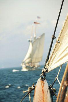 In a previous life, I was a sailor.