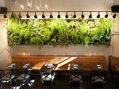 Governor restaurant, DUMBO, Brooklyn, NY
