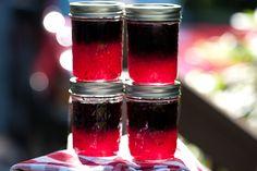 Blueberry Freezer Jam (1 of 1):  use Ball Instant Fruit Pectin.  Less sugar, and just for freezer jams