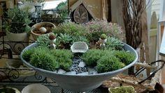 Loving this fairy garden. by geraldine
