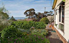 Garden along side of Admirals Inn