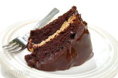 Chocolate Fudge Peanut Butter Cake incredibly delicious!