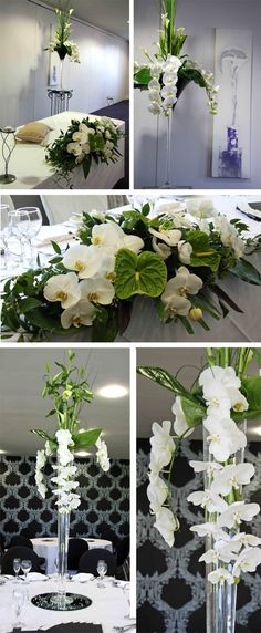 DECOR   Centerpiece - Crisp modernity of the tall martini centerpiece design using orchids, anthuriums, curly bamboo and calla lilies!
