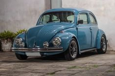 Volkswagen Beetle, Vespa, Bahama Blue, Vw Beetles, Old Cars, Porsche, Classic Cars, Blues, Vw Bugs