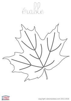 Coloriage Dessin Feuilles Automne Vigne Leaves Pinterest