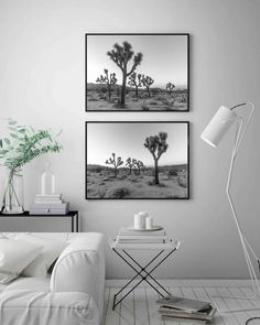 Botanical Wall Art, Botanical Prints, Bedroom Wall Art Above Bed, California Home Decor, Black And White Landscape, Tree Wall Art, Cactus Print, Tree Print, Landscape Prints
