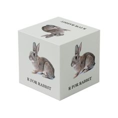 R For Rabbit Cube Photo Cubes, Images And Words, Cleaning Wipes, Rabbit, Prints, Animals, Color, Bunny, Rabbits