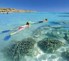 Ningaloo Reef, Western Australia - Travel Pinspiration: www.ytravelblog.com/travel-pinspiration-western-australia