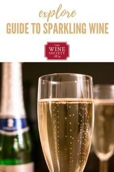 A beginner's guide to sparkling wine, from Champagne to Cava, Prosecco and all kinds of delicious bubbly! Find out how different sparkling wines are made, where to find good sparkling wine and what to look out for on the label. Wine Glass Holder, Wine Bottle Opener, Wine Bottle Labels, Best Sparkling Wine, Sparkling Drinks, Cocktails, Wine Society, Riesling Wine, Wine Facts