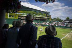World Press Photo Wimbledon Tennis, World Press, The Championship, Press Photo, Photo Archive, Photo Contest, The Outsiders, Sports, Life