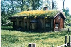Norway sod roof house