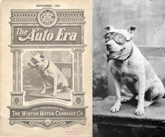In 1903, Bud the Pit Bull rode along with Horatio Nelson Jackson and driving partner Sewall K. Crocker, the first people to drive an automobile across the United States. The dust bothered Bud's eyes so much that he was fitted with a pair of goggles. These goggles were later donated to the Smithsonian.