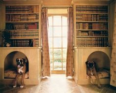 library dog beds