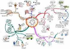 The Nervous System mind map created by Jane Genovese will help you to appreciate… Mind Maps, Mind Map Art, Nursing Assessment, Nursing Mnemonics, Mind Map Examples, Body Systems, Anatomy And Physiology, Life Science, Science Ideas
