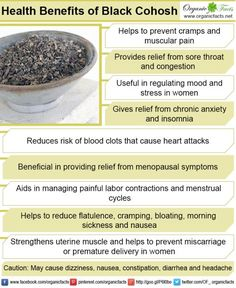 Black cohosh is a popular remedy for menopausal symptoms and also helps to reduce inflammation, eliminate spasms, lower blood pressure and regulate menstrual periods. Healing Herbs, Natural Healing, Black Cohosh Menopause, Herbal Remedies, Natural Remedies, Health Benefits, Health Tips, Calendula Benefits, After Life