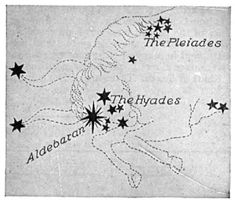 The Taurus constellation is explained by a few Greek myths. Some say it represents Zeus disguised as a bull. Contains the star Aldebaran, proximate to the Pleiades Star Constellation Tattoo, Star Constellations, The Pleiades, Bild Tattoos, Symbolic Tattoos, Tattoo Blog, Tattoos With Meaning, Signs, Stars And Moon