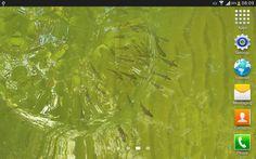 App Review: True Water Live Wallpaper