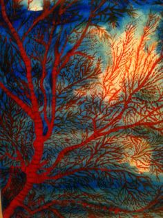 Sea Fern - fire coral - Painted by Isabel Macleod
