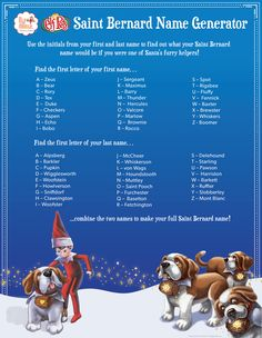 Santa's sending his Elf Pets® Saint Bernard pups to homes around the world—and it's up to you to name your furry new friend! Perhaps Fido or Maggie? Maybe Princess or Spike? Elf Names, Reindeer Names, Christmas Names, Christmas Elf, Xmas, Elf On The Self, The Elf, Elf On The Shelf Pet Ideas, Shelf Ideas