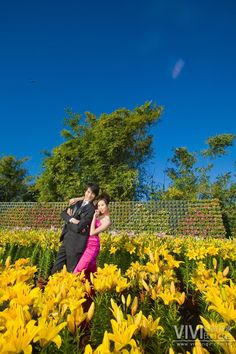 Her pink dress really stands out among all the yellow flowers.