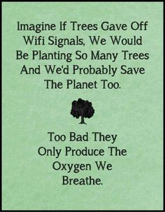 Save the trees - Thank You, Great Spirit