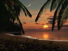 Papel de Parede de Lua, Pôr do sol, praia e coqueiros