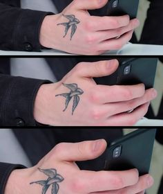 His hands are beyond perfect. Pics Of Shawn Mendes, Shawn Mendes Tattoos, Shawn Mendes Memes, Hand Tattoos, Tatoos, Chon Mendes, Mendes Army, Swallow Bird, Camilla