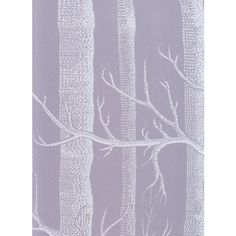 Cole & Son Wallpaper Woods Wallpaper ($99) ❤ liked on Polyvore featuring home, home decor, wallpaper, tree wallpaper, tree pattern wallpaper, tree home decor, woods wallpaper and pattern wallpaper