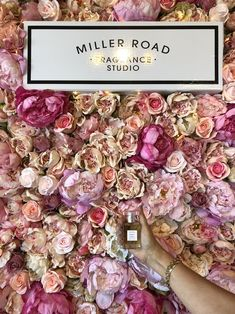 Don't take our word for it check out what our happy customers have to say about the Miller Road bespoke scent experience on Trip Advisor. Daughter Birthday, To My Daughter, Auckland Activities, Candle Store, Perfume Making, Home Fragrances, North Shore, Flower Petals