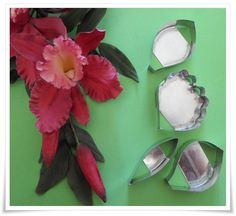 #Cattleya#orchid#flower#cutter Cattleya Orchid, Orchids, Cake Decorating, Flowers, Royal Icing Flowers, Flower, Florals, Floral, Orchid