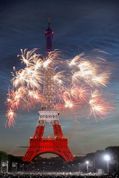 Bastille Day celebration!! Symbolizes the end of Louis XVI's reign - powerful and festive photo