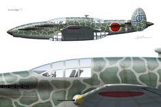 11362d1300006037-japans-secret-ww2-fighter-kurowashi_web900.jpg (800×533)