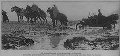 Birinci Dünya Savaşı'nda Makedonya Cephesi, Selanik yakınları.