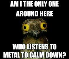 People think I'm insane, that's because I am.- People think I'm insane, that's because I am. 📌People think Im insane, that's because I am. Papa Roach, Breaking Benjamin, Garth Brooks, Retro Humor, Metal Meme, Sara Bareilles, Heavy Metal Music, Heavy Metal Girl, Music Memes