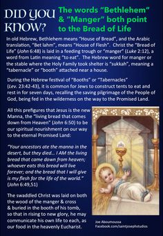 More Biblical evidence of the Real Presence of Christ in the Holy Eucharist. Catholic Quotes, Catholic Prayers, Religious Quotes, Catholic Liturgical Calendar, Catholic Answers, Religious Education, Eucharist, Catechism, Roman Catholic