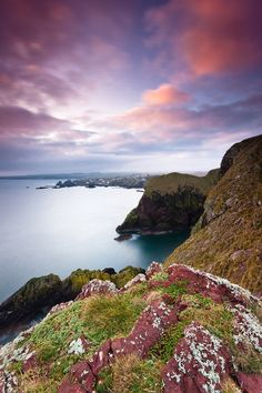 St. Abbs Head, Scotl