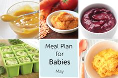 Meal Plan for Babies - May — Baby FoodE | organic baby food recipes to inspire adventurous eating