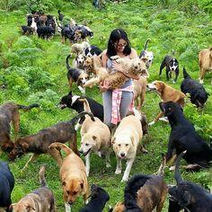 Territorio de Zaguates -zaguate significa perro sin raza- es un refugio animal de Costa Rica, financiado con fondos privados, en el que los perros callejeros y abandonados han encontrado un lugar para quedarse. Lo gestionan voluntarios y no se sacrifica en ningún caso a los animales. También han hecho varias campañas en las que defienden que los perros que no son de raza también tienen derecho a encontrar un hogar en el que recibir cariño y cuidados. Por eso, con el objetivo de transmitir…