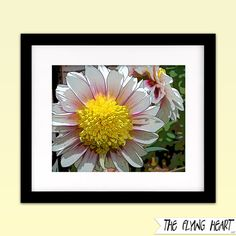 Printable wall art decor: Floral stylized photography, Dalia, flower art, close up, pink, green, yellow, white   by TheFlyingHearts, $5.00
