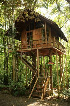 La Fortuna Treehouse Hotel