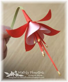 Mainly Flowers Independent Stampin' Up! Demonstrator Joanne Gelnar: Orchids and a Fuchsia