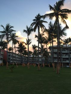 Our family vacation in Punta Cana: Barcelo Bavaro Palace Deluxe Resort Information on activities, rooms, food and Best Resorts For Kids, Best All Inclusive Resorts, Group Travel, Family Travel, Barcelo Bavaro Palace Deluxe, Kid Friendly Resorts, Caribbean Resort, Punta Cana, Family Life