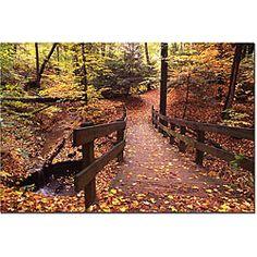Kurt Shaffer 'Autumn Bridge' Gallery-wrapped Canvas Art - Overstock™ Shopping - Top Rated Trademark Fine Art Canvas