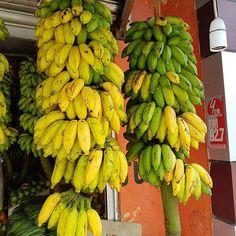 Going bananas. #Repost @jenhans2 with @get_repost  Just bananas  #lovesrilanka   #reiseliv #reisetips #reiseråd #reiseblogger