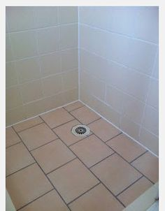 Are you in need of quality services in leaking service